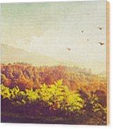 Hazy Morning In Trossachs National Park. Scotland Wood Print by Jenny Rainbow