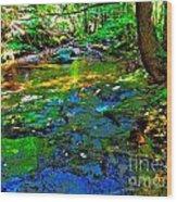 Hcbyb 114 Wood Print