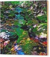 Hcbyb 276 Wood Print