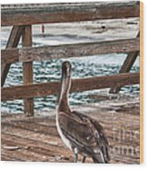 hd 392 hdr - Pelican On The Pier Wood Print