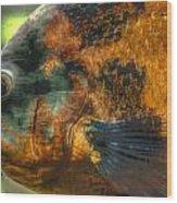 Hdr - Fish Wood Print
