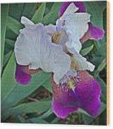 Hdr Iris Wood Print