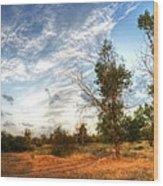 Hdr Landscape Wood Print