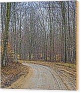 Hdr Rainy Spring Adventure Wood Print