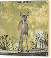 He Makes My Feet Like The Feet Of Deer Wood Print by Kathy Clark