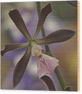 He Pua Ke Aloha - The Flower Of Love - Orchidea Tropicale Wood Print