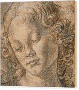 Head Of An Angel Wood Print