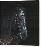 Head Of An Equine Warrior Wood Print
