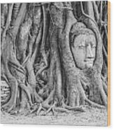Head Of Sandstone Buddha  Wood Print