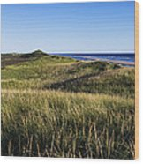 Head Of The Meadow Beach Wood Print