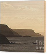 Headland Wood Print by Anne Gilbert