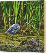 Headless Heron Wood Print