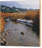 Headwaters Of The River Of No Return Wood Print