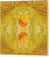 Healing In Golden Sunlight Wood Print