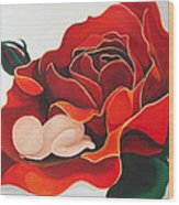 Healing Painting Baby Sleeping In A Rose Wood Print