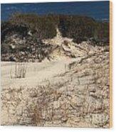 Healthy Dunes Wood Print by Adam Jewell