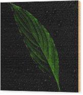 Healthy Green Wood Print