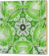 Heart Chakra Venus Wood Print