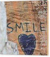Heart In Sandstone Mountain Wood Print