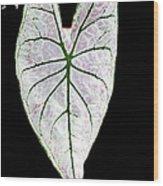 Heart In The Garden Wood Print