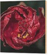 Heart Of A Hibiscus 2 Wood Print