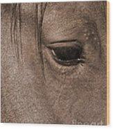 Heart Of A Horse Wood Print
