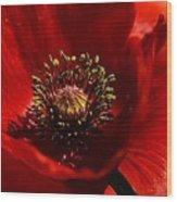 Heart Of A Poppy Wood Print