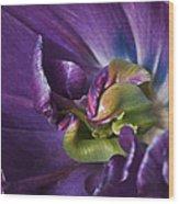 Heart Of A Purple Tulip Wood Print