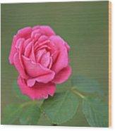 Heart Of My Heart Rose Wood Print