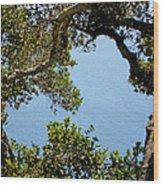 Heart Of Nepenthe - Big Sur Wood Print
