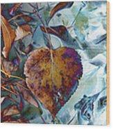 Heart On My Leaves Wood Print
