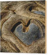Heart Rock Wood Print