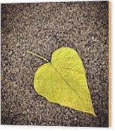 Heart Shaped Leaf On Pavement Wood Print
