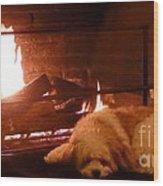 Hearth Warming Dog Wood Print
