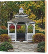 Hearthstone Castle Park Gazebo Wood Print by Stephen Melcher