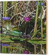 Heat Of The Afternoon - Down At The Lily Pond Iv Wood Print
