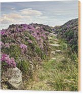 Heather On Simonside Hills Wood Print