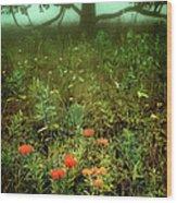 Heaven In The Gloom I - Blue Ridge Parkway Wood Print
