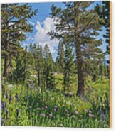 Heaven In The High Country Wood Print