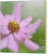 Heavenly Bloom Wood Print