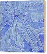 Heavenly Blue Dahlia Wood Print
