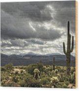 Heavenly Desert Skies  Wood Print