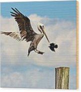 Heavenly Pelican Wood Print