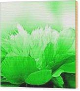 Heavenly Peony Green Wood Print