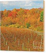 Heavenly Vineyard  Wood Print