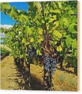 Heavy On The Vine At The High Tower Winery  Wood Print