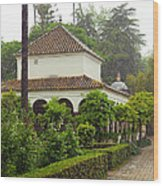 Heavy Rain In Alcazar Gardens Wood Print