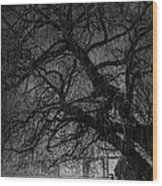 Heavy Rain Wood Print by Svetlana Sewell