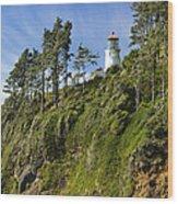Heceta Head Lighthouse 1 A Wood Print
