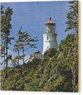 Heceta Head Lighthouse 1 B Wood Print